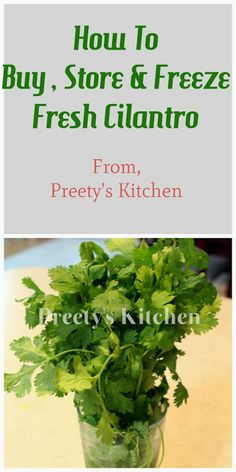 Cilantro is an herb and is sometimes referred to as coriander.Cilantro and Coriander come from the same plant, but they are not the same thi. Cilantro Recipes, Spicy Recipes, Beef Recipes, Easy Recipes, Vegetarian Recipes, Chicken Recipes, Healthy Recipes, Cilantro Plant, Kitchens