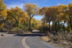 Dayton NV - Dayton State Park: picnicking, walking paths and trails, camping