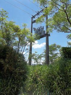 Clientes da Nova Palma Energia pagam a conta de luz mais cara do Brasil :: Palma8SM.com