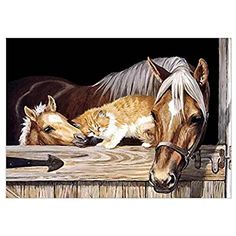 Diamond Embroidery Horse Home Decoration Rhinestone Set Diamond Painting Kits for Embroidery with Beads Size 20x30cm 7.9x12