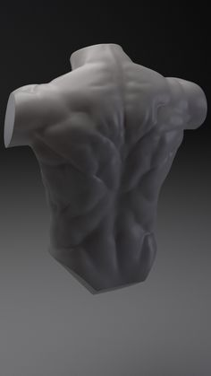 Torso practice in Zbrush. Rendered in Arnold for Maya. Male Pose Reference, Body Reference Drawing, Human Reference, Body Drawing, Anatomy Reference, Drawing Faces, Drawing Tips, Anatomy Sculpture, Anatomy Practice