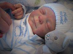 Reborn Baby Doll Nikki Hunn Hunnybear Nursery Resale Elisa Marx Edley