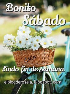 """"""" De Todo Un Poco """": Bonito sábado"""