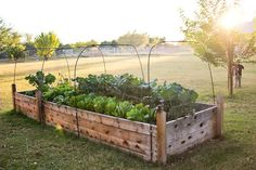 Raised garden beds how to - Finley and Oliver