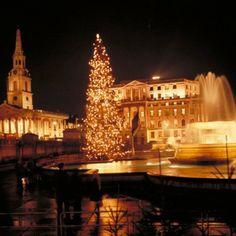 The Christmas tree in Trafalgar Square is traditionally given to the people of Britain from the people of Norway. Christmas Days Out, Christmas In Britain, Christmas In England, Real Christmas Tree, London Christmas, Christmas Pictures, English Christmas, Christmas Houses, White Christmas