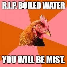 Anti-Joke Chicken | R.I.P. BOILED WATER YOU WILL BE MIST. | image tagged in anti-joke chicken | made w/ Imgflip meme maker