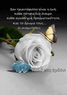 Good Night, Good Morning, Night Pictures, Greek Quotes, Letters, Photography, Nighty Night, Buen Dia, Photograph
