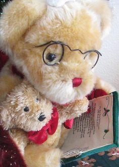 true stor of christmas storytime bear