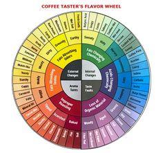 Coffee tasting Wheel
