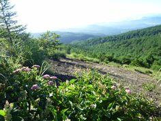 Koasama-Montagna Karuizawa