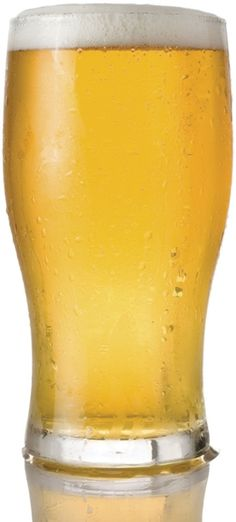 Scientists Make the First New Lager Yeasts in Centuries Watch Out, Sam Adams Scientific American