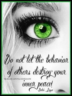 Do not let the behavior of others destroy your inner peace. Peace Quotes, Me Quotes, Baby Daddy Drama, People With Green Eyes, Adult Bullies, World Peace, Life Is Hard, Sarcastic Quotes, Powerful Words