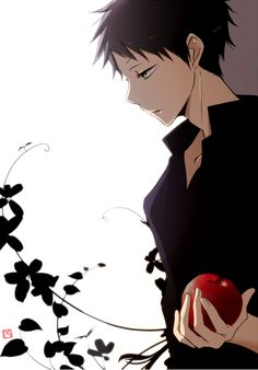Obi (Akagami no Shirayukihime) I was enjoying reading this, and then the website I was using got corrupted. Where to find in English? I see Crunchyroll will have the anime soon. I love Obi.