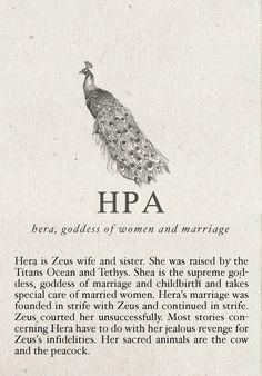 hera and percy jackson image