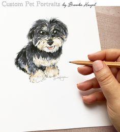 Custom Pet Sketches by Brooke Hagel
