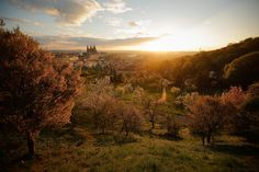 This is the place you really want to visit before sunrise! By this time it's mostly about you, the sun AND LOTS OF BIRDS starting their day up (including woodpeckers! Prague Spring, Blooming Trees, Before Sunrise, Monument Valley, Cruise, Country Roads, Sunset, Landscape, World