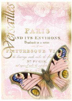 French Ad with butterfly and light pink rose background. Vintage Butterfly, Vintage Birds, Butterfly Art, Vintage Ephemera, Butterflies, Altered Canvas, Altered Art, Vintage Crafts, Vintage Paper