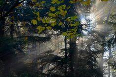 Milešovka - nádherný podzim