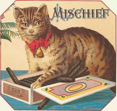 Mischief Cigars indeed. (That cat looks a little weird, kind of like a mix between a cat and a civet.)