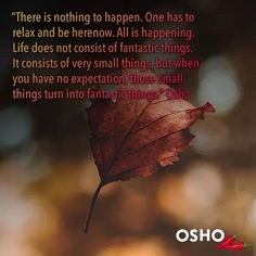 Welcome to the world of OSHO – an opportunity to experience for yourself the essence of meditation. Osho Meditation, Well Said Quotes, Wisdom Quotes, Favorite Quotes, Relax, Shit Happens, Life, Instagram, Videos