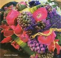 SOMETHING SPECIAL ability to create beautiful and individual flower arrangements for weddings is unbridled. Their expertise and creative flair mean that any colour, style and scale can be achieved in an elegant and modern fashion. Wedding Flower Arrangements, Wedding Flowers, Something Special, Create, Color, Beautiful, Colour, Wedding Floral Arrangements, Colors