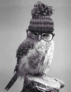 Well, I'm wise enough to wear a cap when it's cold and glasses so I can read.