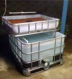 Aquaponics / Fish Farm /chicken tractors /clean food diy @Aimee Vajtauer