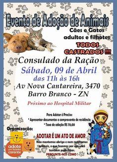 BONDE DA BARDOT: SP: Focinho Carente faz campanha de adoção de animais no Barro Branco, Tucuruvi, neste sábado (09/04)