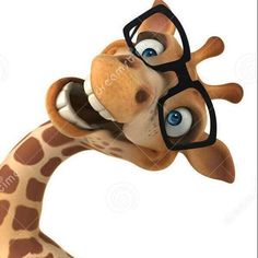 Funny Animal Pictures, Funny Photos, Cute Pictures, Funny Animals, Cute Animals, Giraffe Drawing, Giraffe Art, Funny Good Morning Quotes, Funny Giraffe