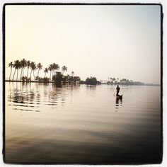Ente keralam (My Kerala) Places To Travel, Places To Go, Mother India, Kerala India, Green Architecture, Kochi, Beautiful Moments, Tourism, Nature Photography