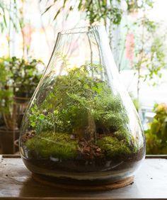 5 Inspiring (& Easy) Urban Gardens http://www.refinery29.com/urban-gardening?utm_source=email_medium=editorial_content=chicago_campaign=130408-urban-gardens
