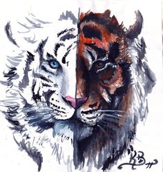The Twofaced Tiger by Nyght11.deviantart.com on @deviantART