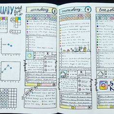 Weekly & Daily Spread - January 2017 Week 2 The first part of the week is filled in. Where on earth is January going?! . . . #bujojunkies #bujo #bulletjournal #bullet #journaling #journal #tracker #habittracker #bujotracker #planwithme #planwithmechallenge #weightloss #weighttracker #dailytracker #leuctturm1917 #bulletjournallove #bohoberrytribe #bulletjournalcommunity #bujocommunity #bujolove #bulletjournaljunkies #bujojunkies #showmeyourplanner #discoverbulletjournal #planneraddict…