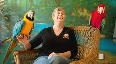Most of the birds Judy Tennant rescues — she currently has 15 — are the result of well-meaning owners who discover too late the enormous commitment required of having a parrot.