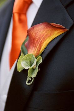 Flowers, Orange, Calla lily, Tie, Boutteniere