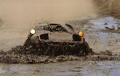 Juha Kankkunen, TTE Toyota Celica, Safari Rally