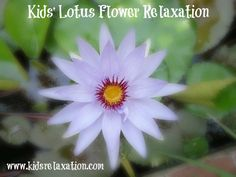 "Emotional regulation through relaxation practice.  Help your child to become stronger through the ""mud moments"" of life:  Blooming From Mud: Kids' Lotus Flower Relaxation"