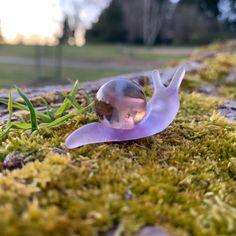 Original Violet Snarble Snail Art, Glass Engraving, Dream Tattoos, Glass Marbles, Magick, Garden Art, Character Inspiration, Really Cool Stuff, Garden Sculpture