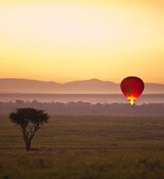 Take advantage of all Kenya has to offer with a tailor-made safari experience through Abercrombie & Kent. Specialists in travel for over 55 years. Air Ballon, Hot Air Balloon, Tanzania, Kenya, Oh The Places You'll Go, Places To Travel, Balloon Flights, Weekend Breaks, Travel Companies