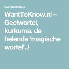 WantToKnow.nl  – Geelwortel, kurkuma, de helende 'magische wortel'..!