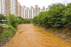 Cheongju, South Korea - July 16, 2017: Muddy water flows through the stream between apartment complexes due to heavy rain.