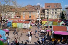 Spring Festival - Colmar celebrates Spring www.printemps-colmar.com