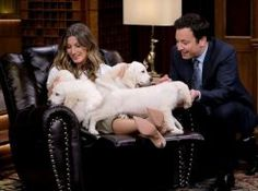 """cool Gisele Bunchen, Jimmy Fallon Play """"Pup Quiz"""" On """"Tonight Show"""" (VIDEO)"""