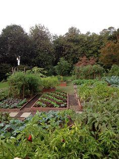 The White House kitchen garden.  (photo by Angie Klein)