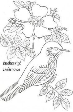 Song Sparrow Coloring page Embroidery Designs, Ribbon Embroidery Tutorial, Butterfly Embroidery, Embroidery Stitches, Bird Coloring Pages, Adult Coloring Pages, Coloring Books, Bird Drawings, Easy Drawings
