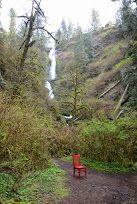 The Red Chair Travels to Munson Creek Falls #redchairtravels #traveloregon #tillamookcoast #oregonbedandbreakfastguild