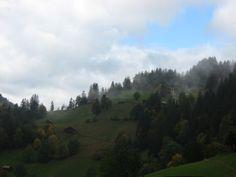 Misty in Wengen, Switzerland. October 2012.