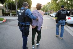 Grasso writes: U. Immigration and Customs Enforcement is expanding its pilot program testing the DNA of immigrant families to prove their relationship and detect so-called 'fraudulent families. Federal Law Enforcement, Immigration And Customs Enforcement, Ohio, Sanctuary City, The Daily Caller, Federal Prison, Immigration Policy, Entrepreneur, Sports