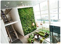 Jardines verticales de pared para interiores! Se ve increible!