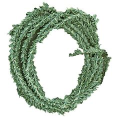 IdeaOlogy Pine Twine 3ydNatural Green * This is an Amazon Affiliate link. Details can be found by clicking on the image.